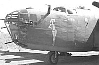 "B-24 Liberator - ""Dauntless Dottie"" - Click for a bigger picture"
