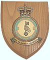 The crest of 518 Squadron - Click for a bigger picture